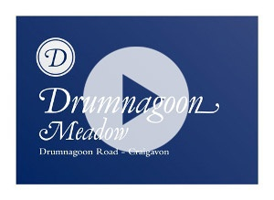Drumnagoon Meadow - Craigavon - Car Cam