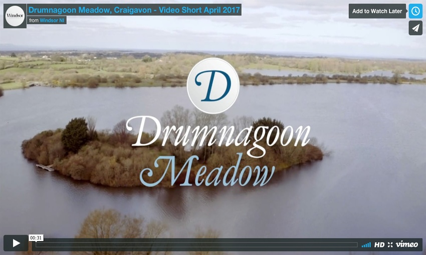 Drumnagoon Meadow, Craigavon - Video Short