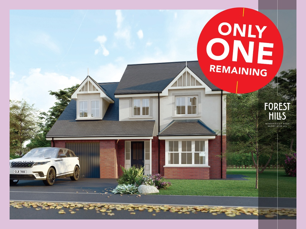 Only 1 Home Remaining At Forest Hills, Newry